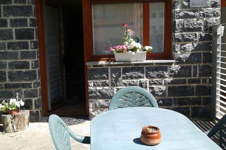 Acogedor e idílico apartamento con jardín - Isaba