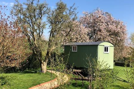 Impstone House B&B Shepherd's Hut, Bowerchalke.