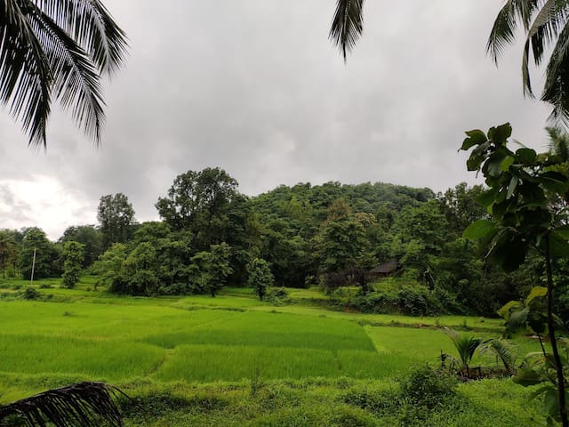 Countryside house in the heart of Konkan near Goa