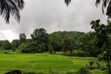 Countryside house in the heart of Konkan near Goa
