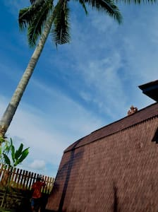 Special Rate for a New Artisan Home - Ubud - Bungalow