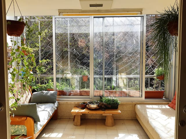 TELAVIV- GREEN JUNGLE HOME