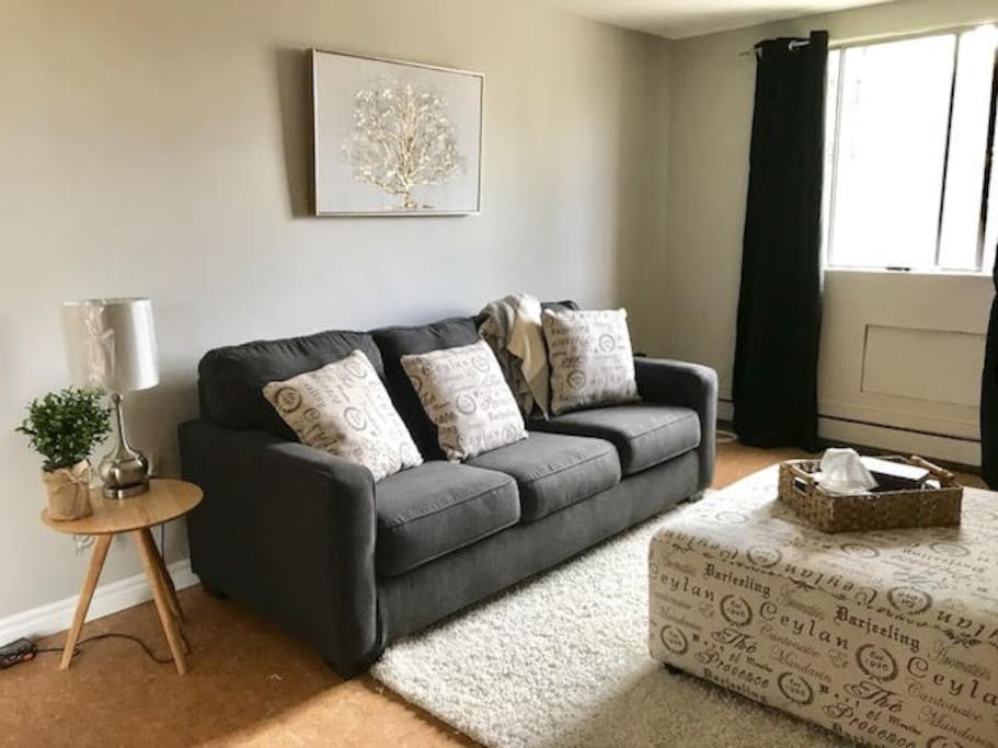 Comfortable & Spacious, the couch is a pull out and provides another double bed!