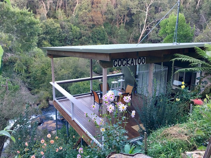 Dorrigo Waterfall Cabins - Cockatoo Cabin