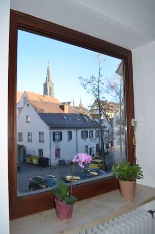 Schönes Zimmer mit Münsterblick im Fischerviertel - Ulm - Apartment