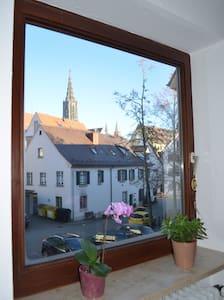 Schönes Zimmer mit Münsterblick im Fischerviertel - 烏爾姆 - 公寓