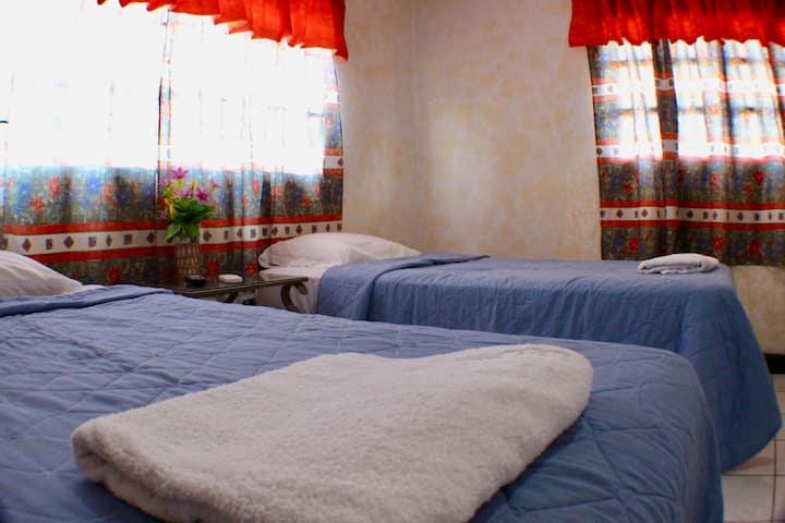 Maria Del Mar | Room 7