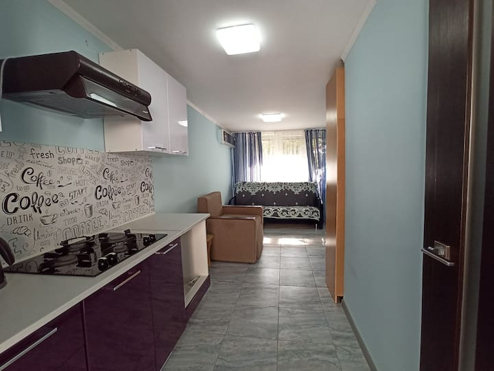 Студия с мини-кухней рядом с Курортным Проспектом
