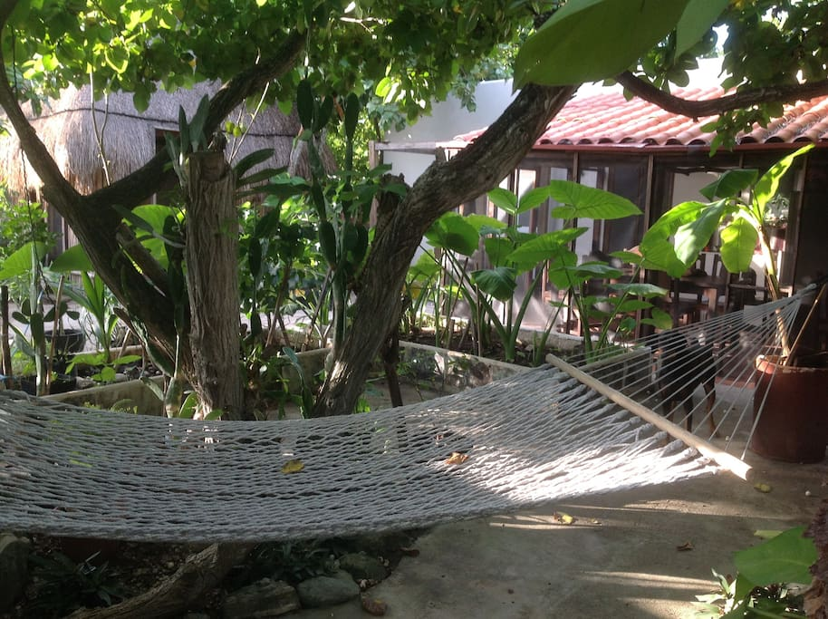 Any takers for the shaded hammock ?