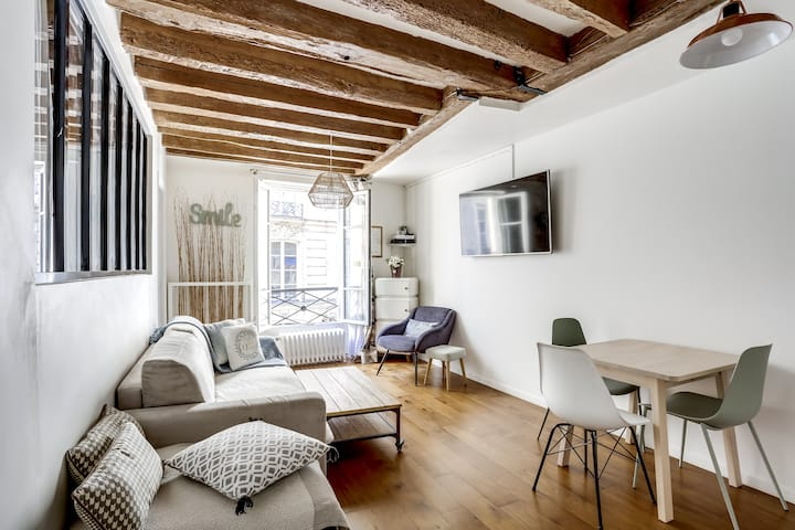 Beautiful appartment near the Louvre/Montorgueil