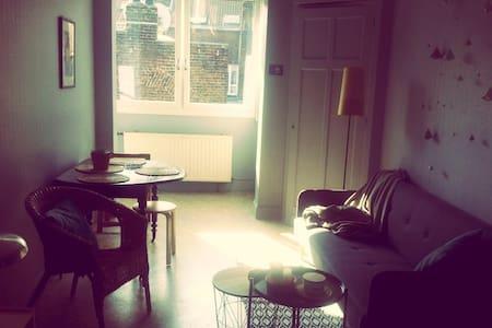 Charmant T2 - 41m² - Wazemmes - Lille - Wohnung