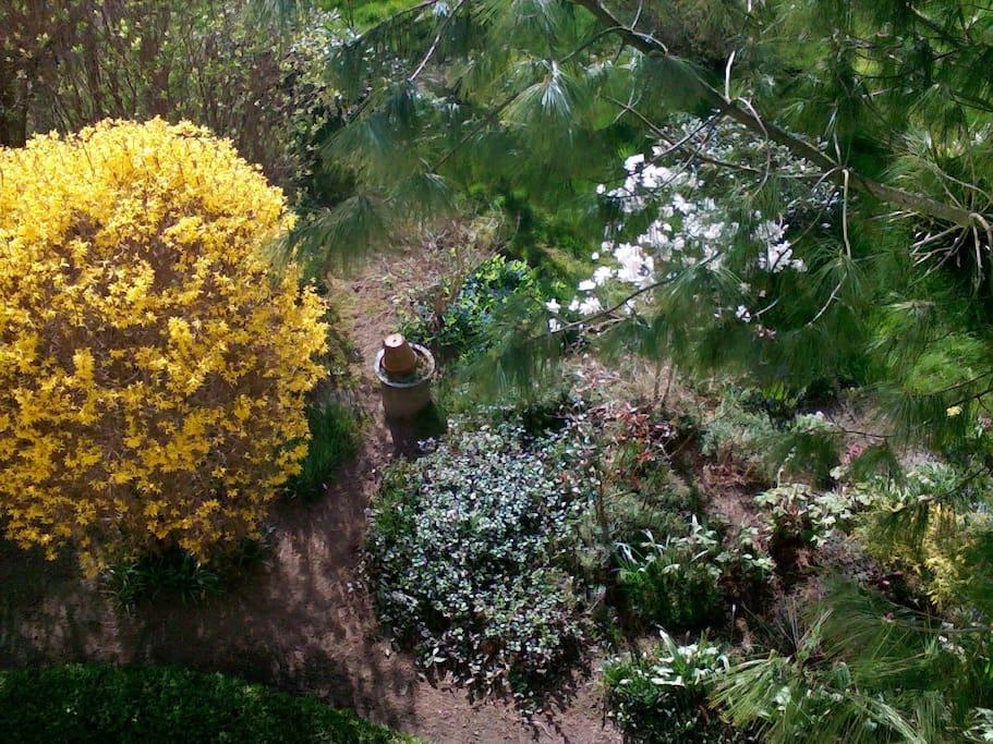 Blick in den Garten vom Gästezimmer aus