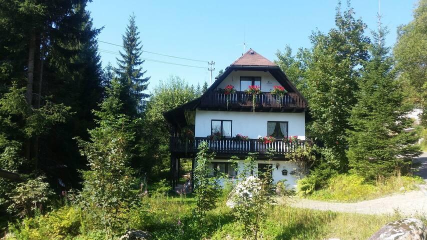 Ferienhaus Schluchsee, freistehend/Garten/Kamin