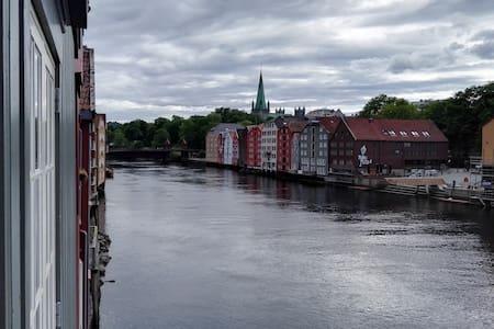 great apartment in central bakklandet - Trondheim