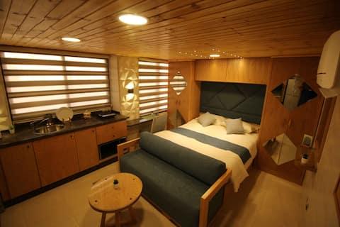 sanar - luxery furnised roof
