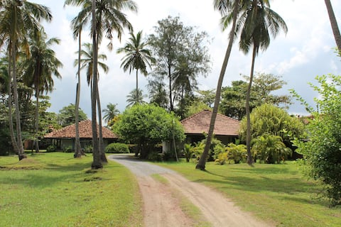Leana Lagoon Cottages - Located on Coconut Estate