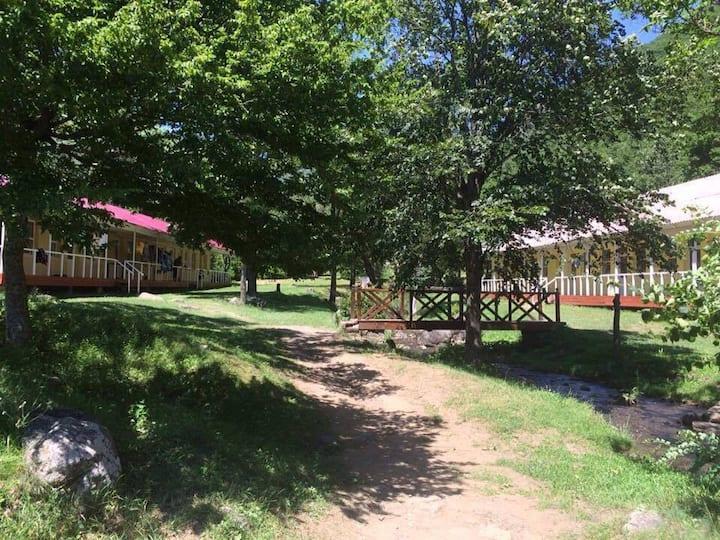 Atskuri Summer Camp