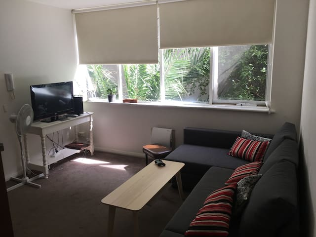 1 bedroom apartment in the heart of Richmond - Richmond - Appartement