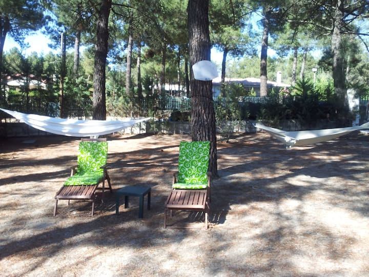 Chalet independiente con piscina y amplio jardín