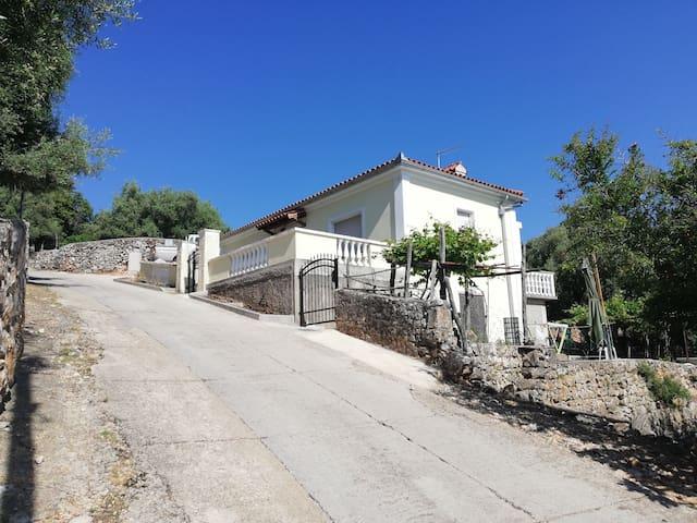 Villa Frane 101