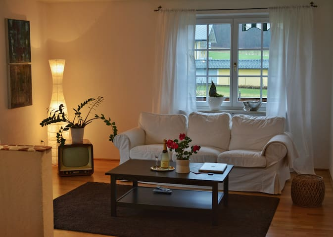 Cozy apartment 20 minutes from Salzburg