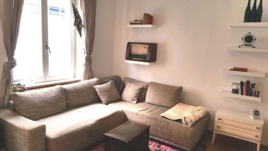 Central 1 Bedroom apartment - 9 min to fair