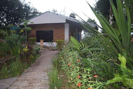 Mastatal Eco lodge / organic farm - Santiago de Puriscal - Srub