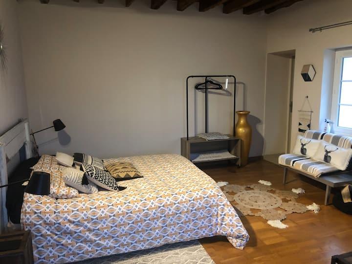 chambre spacieuse   avec  décoration raffinée