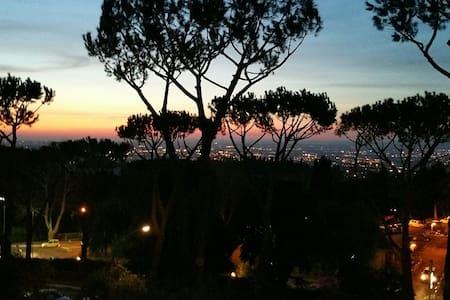 Terrazza su Roma - Frascati - Wohnung