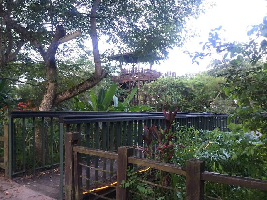 生態池入口