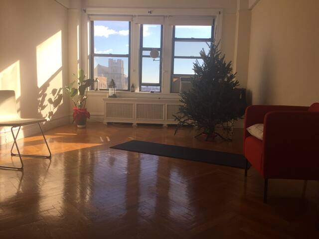 Beautiful large 1 BR apartment ! - New York - Daire