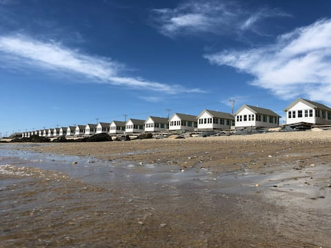 Daisy of Days Cottages - Cottage on the beach