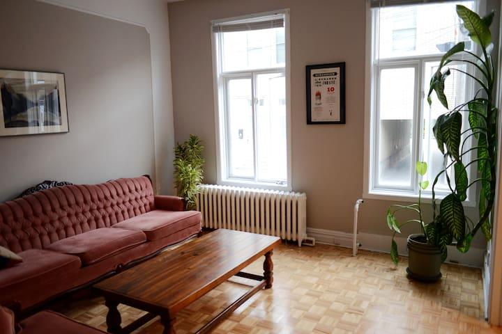 Accueillant appartement en centre-ville - Ville de Québec - Appartement