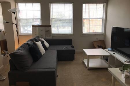 One bedroom apartment near D.C. - 阿灵顿