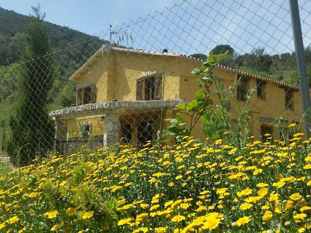 Masia Banyadors en entorno naturaleza - La Selva del Camp - Apartment