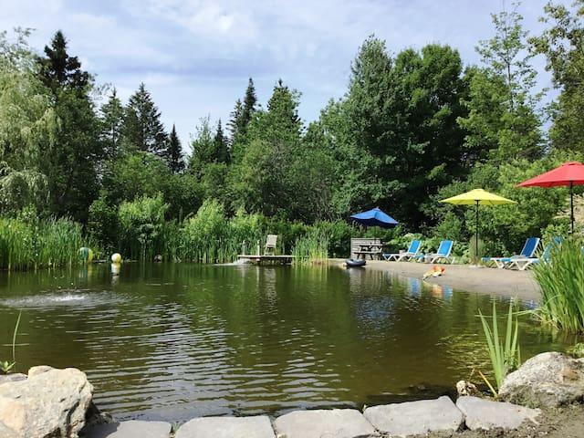 Piscine naturelle (étang de baignade)