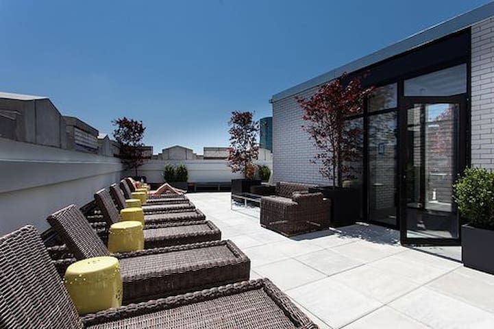 Lux Studio Suite+ Kitchen+Gym+Rooftop @FiDi!