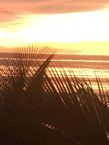 suit frente al mar - Los Llanos  - Casa
