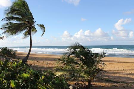 Coconut Beachhouse - San Juan - Casa