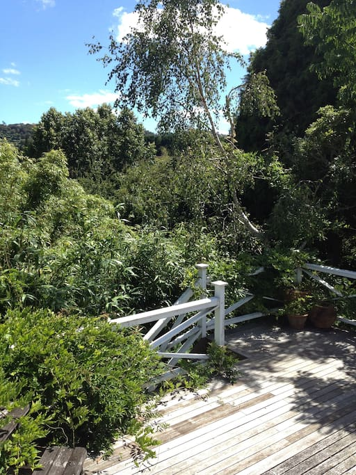This is entrance to the deck of apartment-surrounded by trees - we have planted over 7,000 trees and bushes on this property.