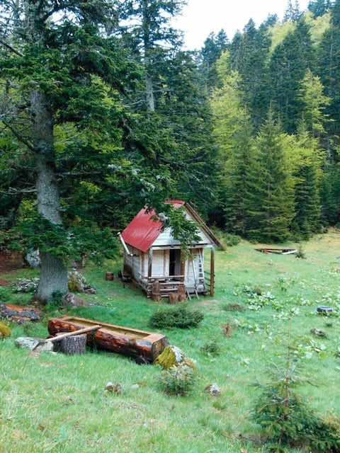 Hand-built eco cabin