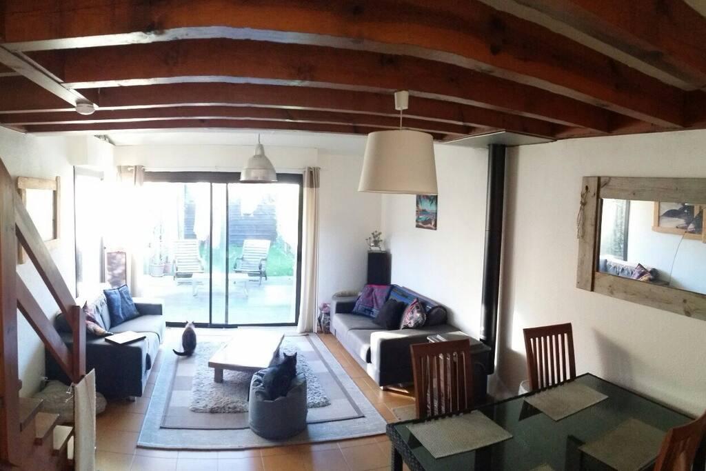 espace salon / salle a manger avec vue sur le jardin