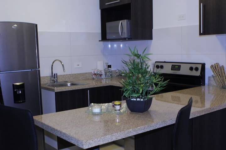 Elegant Apt near Airport,Downtown, and great views - San José - Appartement
