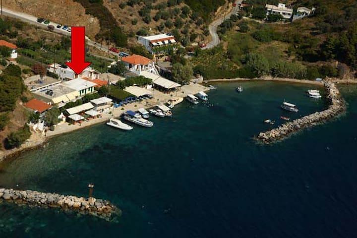ALONNISOS GROverlooking the Aegean - Kalamakia - Apartament
