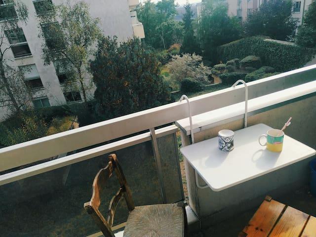 Studio avec balcon (Belleville/ buttes Chaumont)