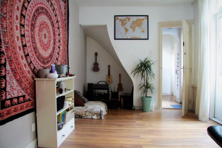 Cosey appartement in The Hague city  close to sea