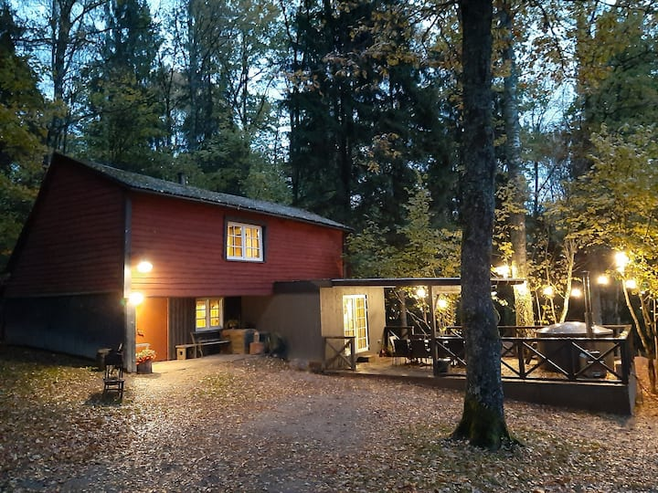 Mosku Pirts - countryhouse&sauna. Entire house