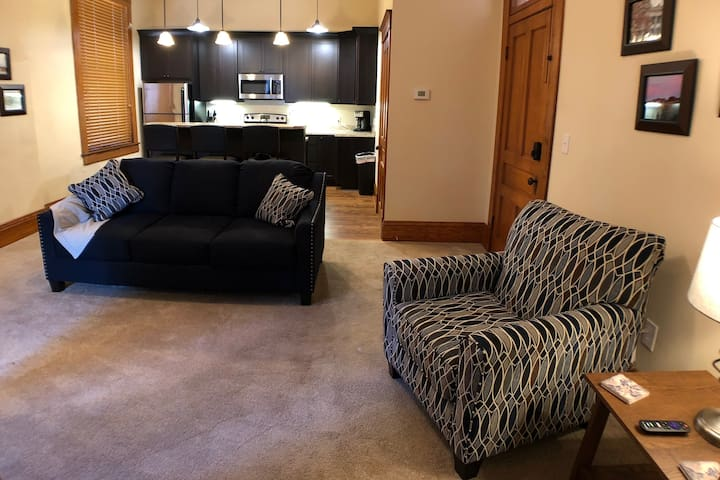 Modern Apartment in Historic Downtown Sedalia - B
