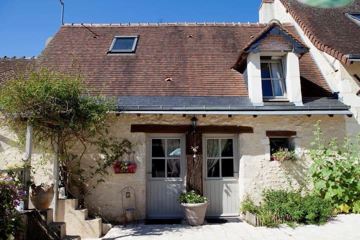 Proche chateaux de la Loire et Zoo de Beauval