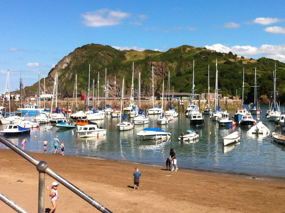 Ilfracombe harbour Chris and Fi